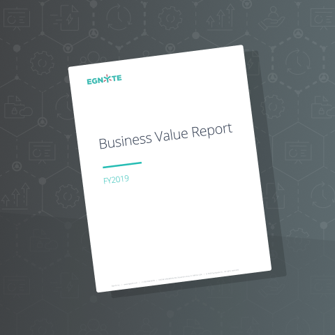 Engyte Business Value Assessment 2019 Annual Report