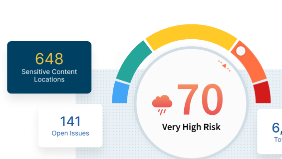 risk score with sensitive content locations and open issues